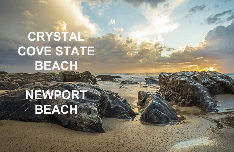 Event Highlight: Corporate Incentive Dinner at Crystal Cove, Newport Beach