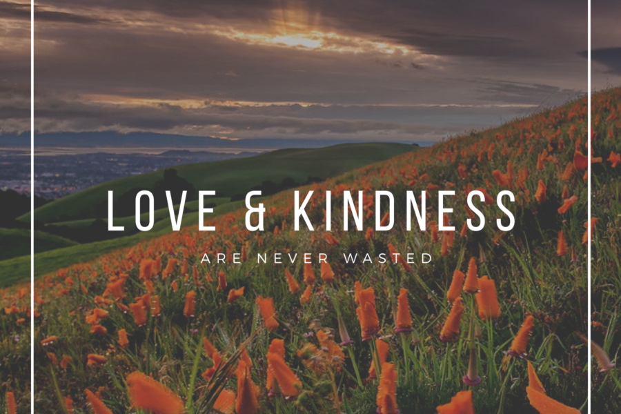 Love & Kindness