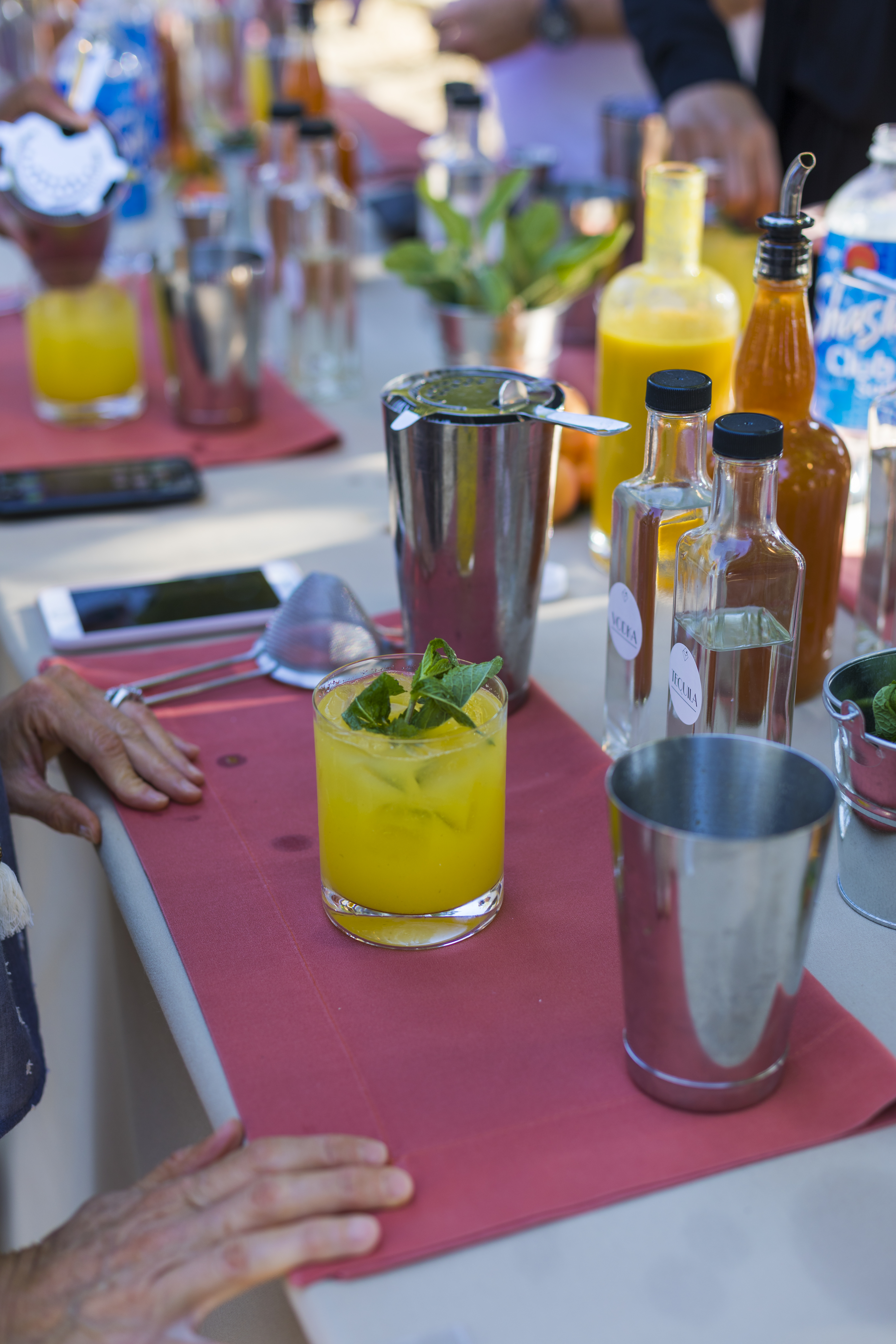 Mixology Demonstration and Interactive Experience
