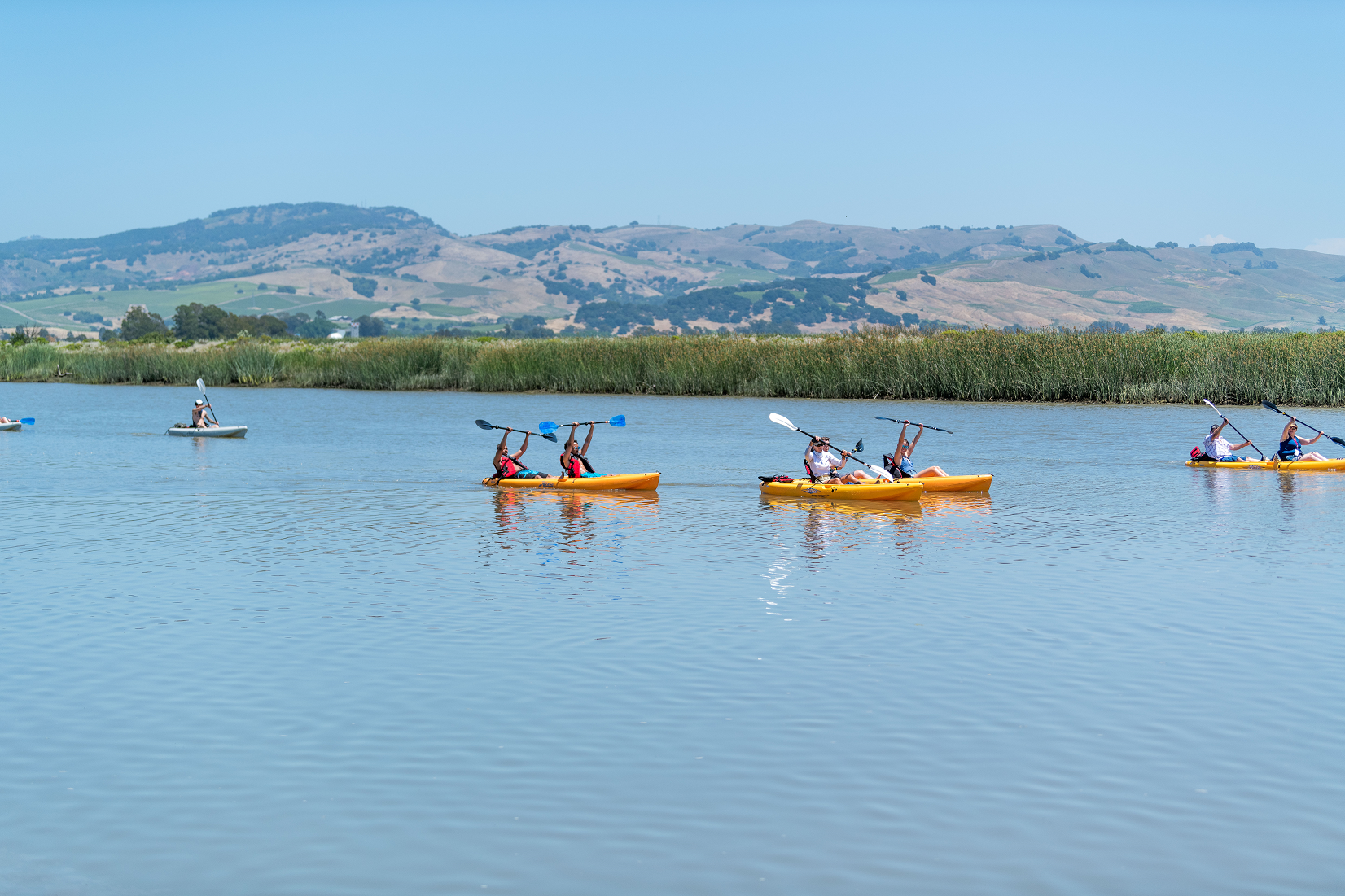 A group of kayakers on the Napa River