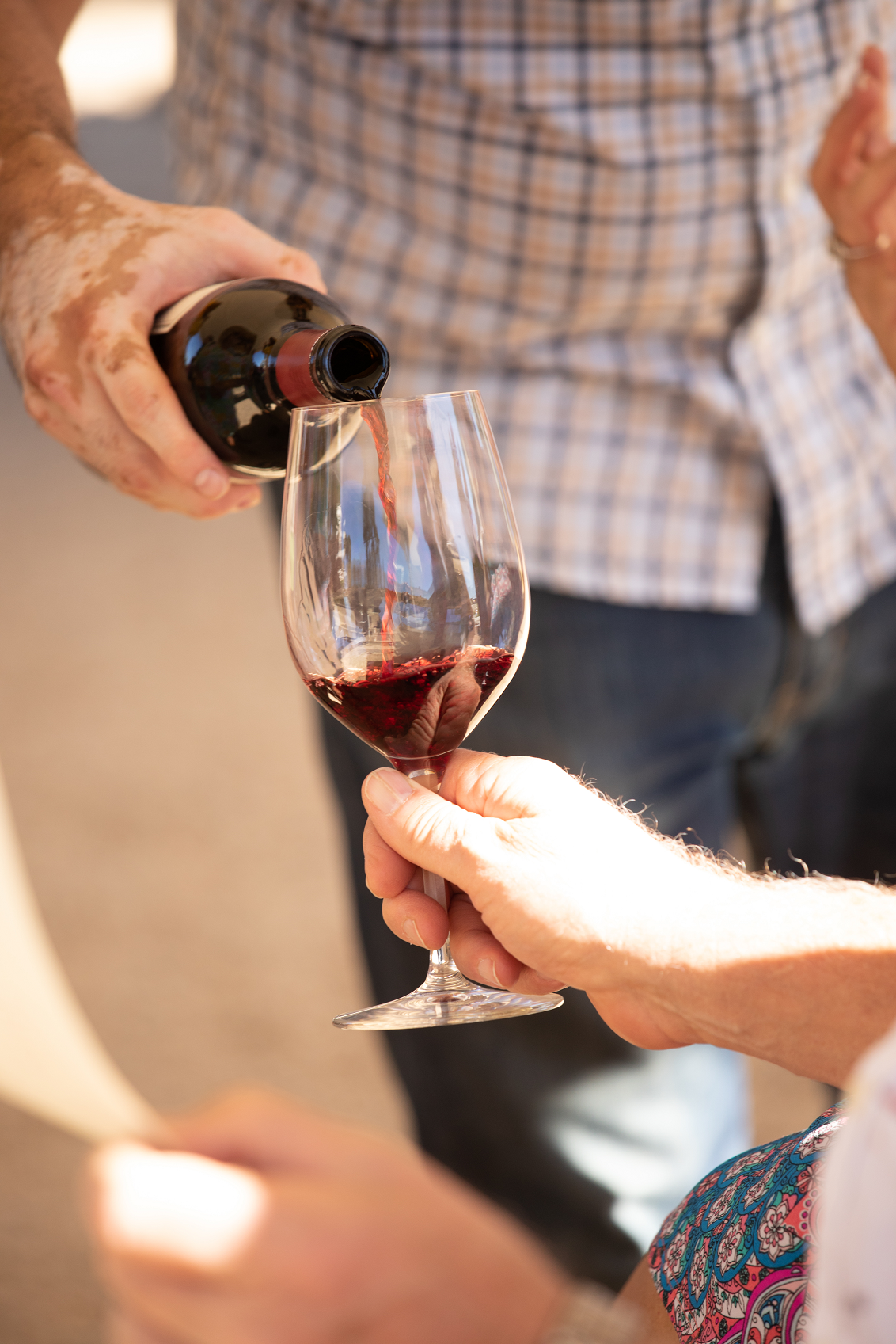 A person pours red wine from a bottle into a waiting glass