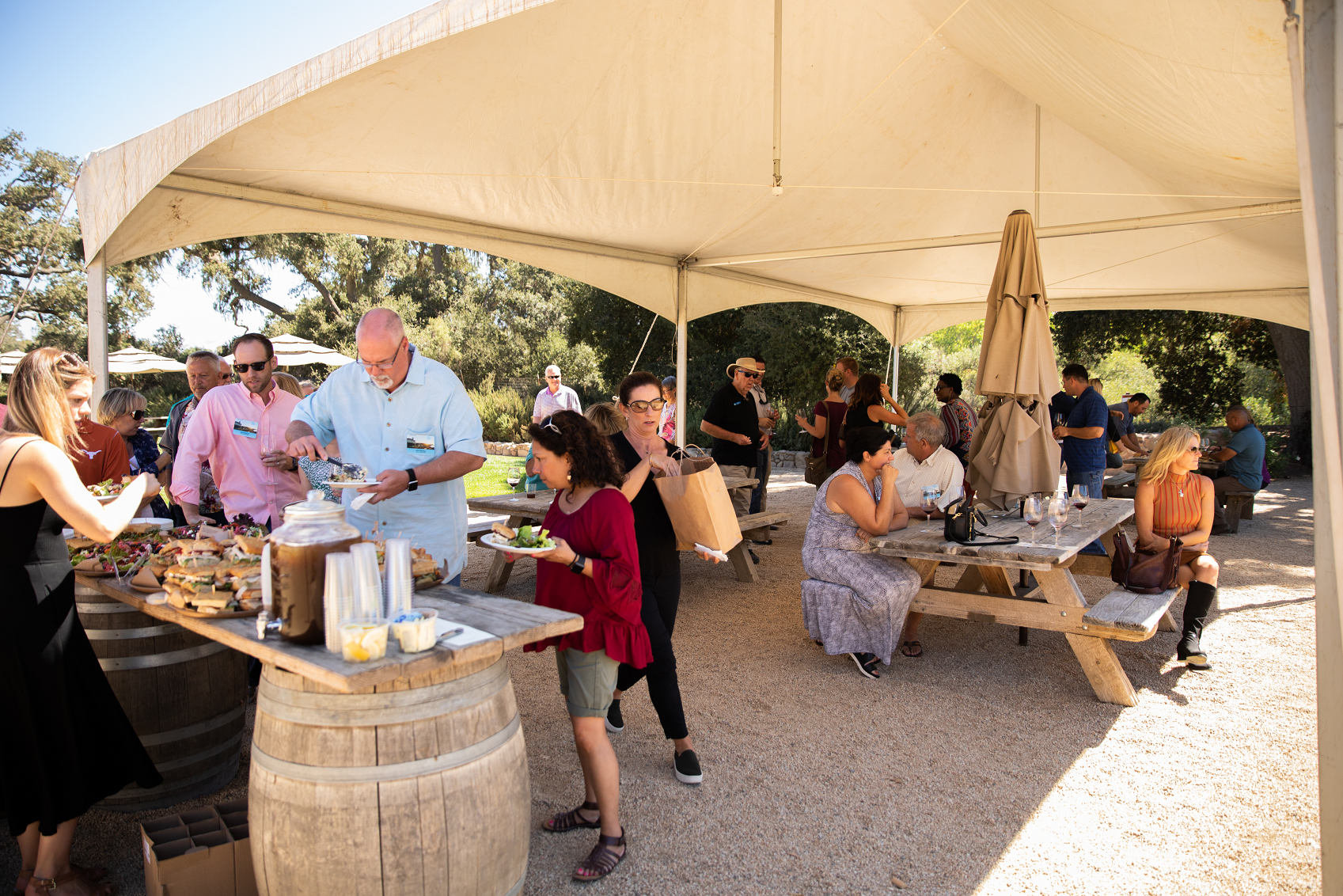 A tented area is set up with a lunch buffet and picnic tables for a group of guests to enjoy lunch and wine tasting in the shade