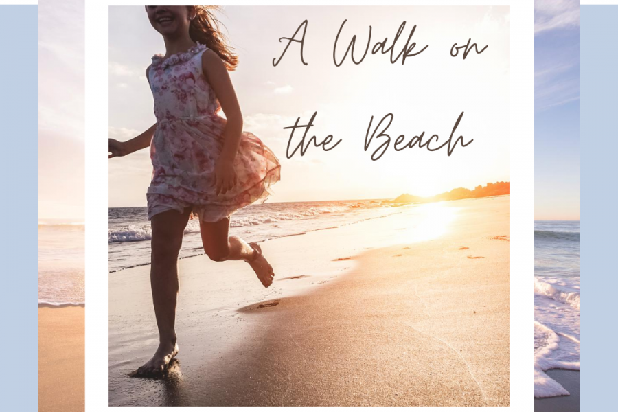 A Walk on the Beach…